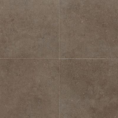 Daltile City View Neighborhood Park 12 in. x 12 in. Porcelain Floor and Wall Tile (10.65 sq. ft. / case)