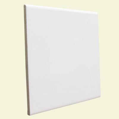 U.S. Ceramic Tile Color Collection Bright White Ice 6 in. x 6 in. Ceramic Surface Bullnose Wall Tile-DISCONTINUED