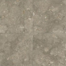 Daltile Caspian Shellstone 12 in. x 12 in. Natural Stone Floor and Wall Tile (10 sq. ft. / case)-DISCONTINUED