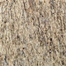 Daltile Santa Cecilia 12 in. x 12 in. Natural Stone Floor and Wall Tile (10 sq. ft. / case)