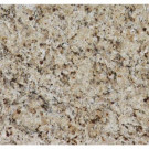 MS International St. Helena Gold 12 in. x 12 in. Polished Granite Floor and Wall Tile (10 sq. ft. / case)